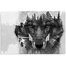 cuadro de lobo